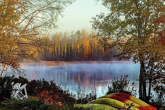 Still morning birch tree reflection by Jeff Folger