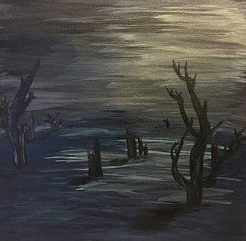 Still of Night by Susan Snow Voidets