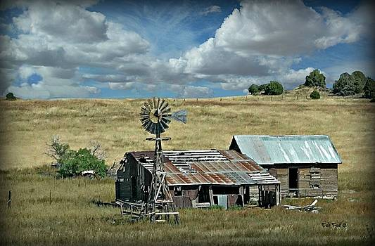 Still Standing by Dale Paul