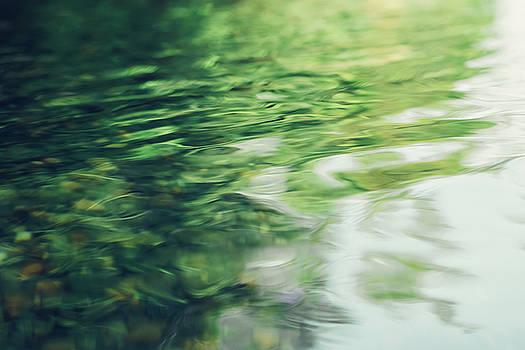 Still Water Reflections by Debi Bishop