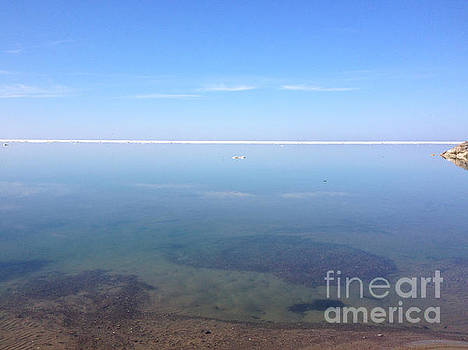 Still Tranquil Waters by Anne Cameron Cutri