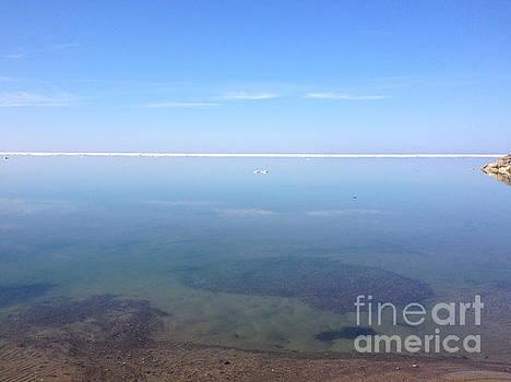 Anne Cameron Cutri - Still Tranquil Waters