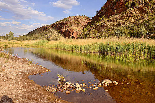 Glen Helen Gorge, Australia by Vicki Vale