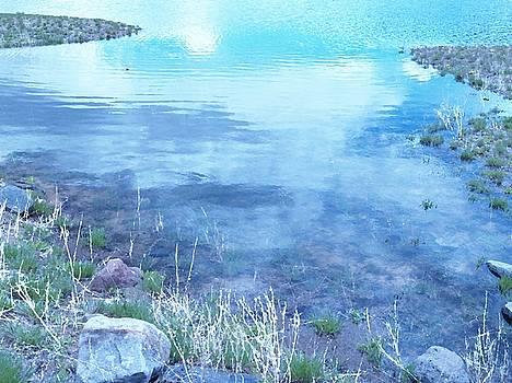Still Waters in Motion by Mikki Cromer