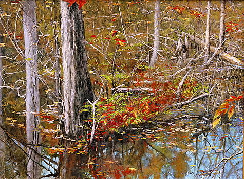 Still Waters by Jackie Langford
