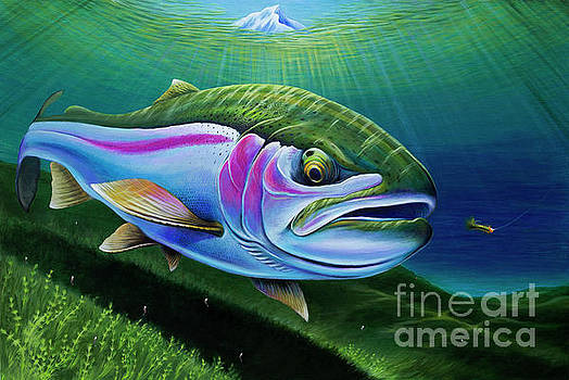 Stillwater Pennask Rainbow Trout by Nick Laferriere
