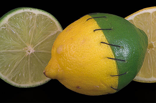 Stitched Lemon and Lime by Rob Byron