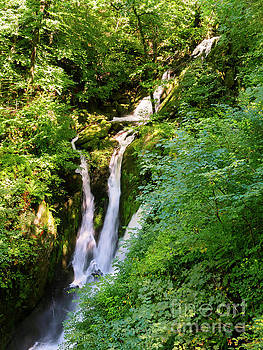 Stock Ghyll Force near Ambleside in the Lake District Cumbria by Louise Heusinkveld