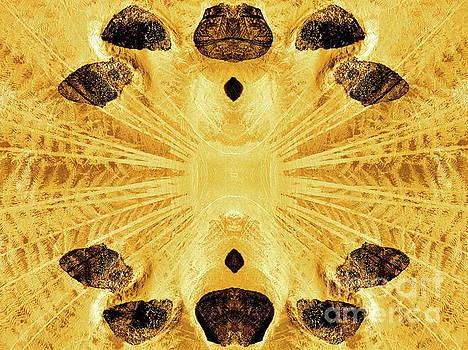 Tim Richards - Stone Age Vision 2
