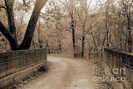Gary Wonning - Stone Bridge on Cave Hill Road