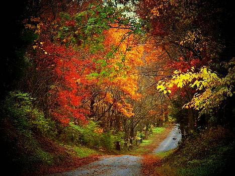 Stone Bridge Road by Joyce Kimble Smith