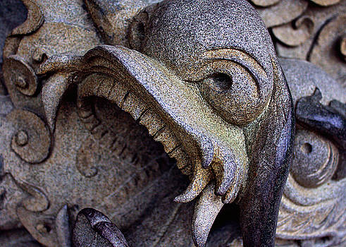 Stone Dragon by Tyler Photographer