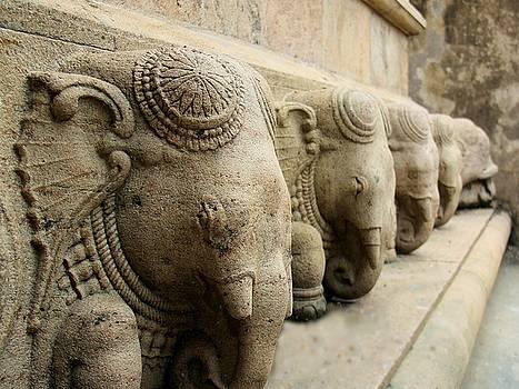 Stone Elephants by Ajithaa Edirimane