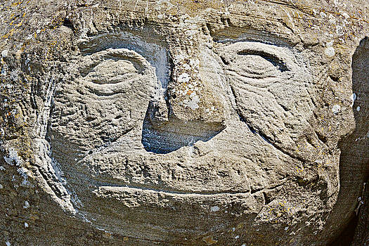 Stone Face by Peter J Sucy