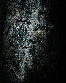 Stone Faced by Michael Arend