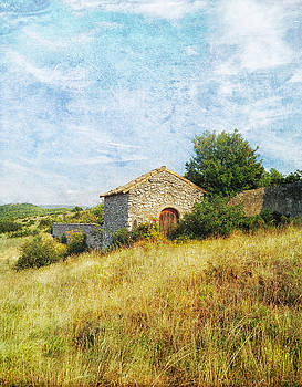 Provence Countryside by Catherine Alfidi