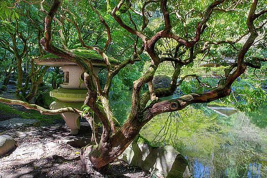 Stone Lantern by Upper Pond by David Gn