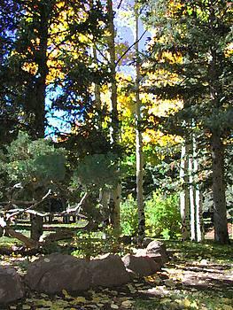 Stone Park Trails by Deleas Kilgore