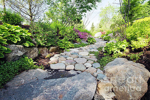 Stone Path by Denise Woldring