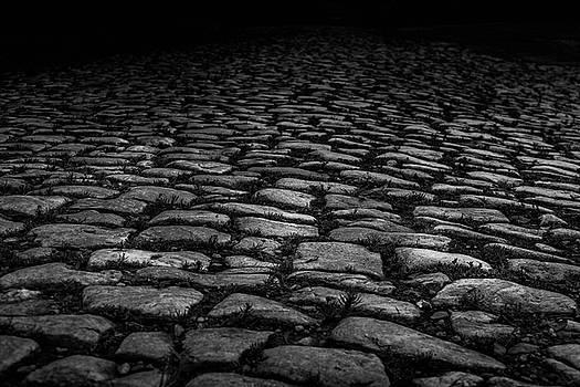 Stone Path by Doug Camara