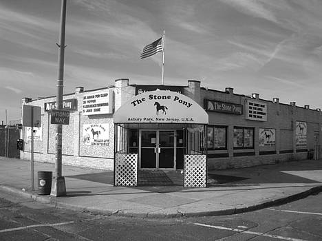 Stone Pony  by Shannon OBrien