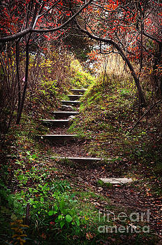 Stone Steps in Odiorne Park NH by Deena Athans