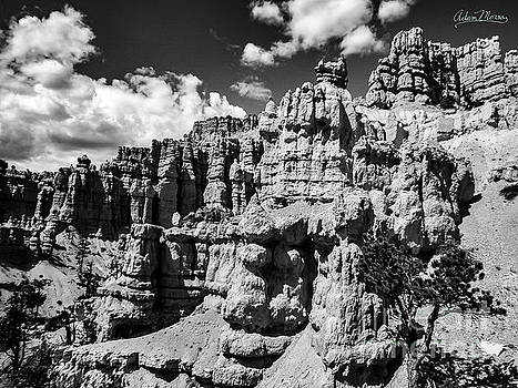 Stone Temple, Black and White by Adam Morsa