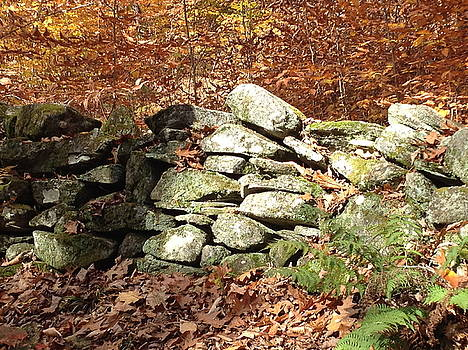 Stone Wall in Autumn by Eric Gottesman