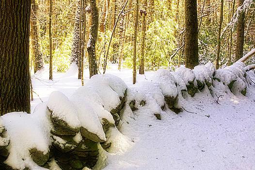 Stone Wall in Winter by Gary Shepard