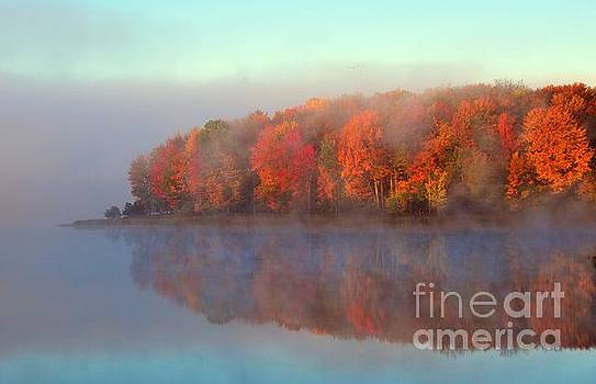 Stoneledge Lake Pristine Beauty in the Fog by Terri Gostola