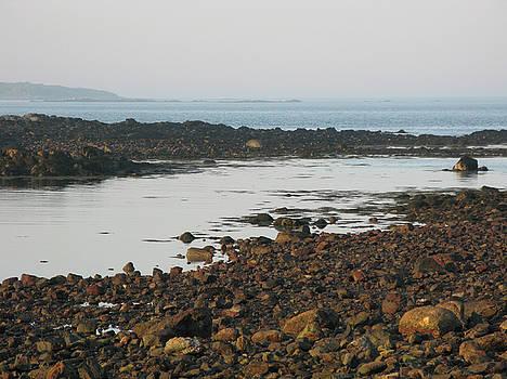 Stones at Low Tide by Lynn Harrison