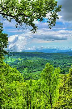 Stoney Fork Vista by Dale R Carlson
