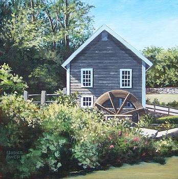 Stony Brook Gristmill by Candice Ronesi