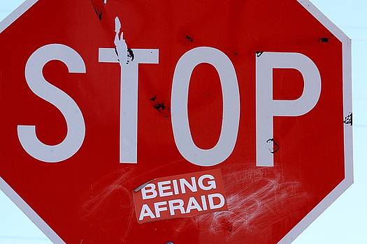 Stop Being Afraid by Judy C Moses