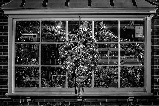 Tim Wilson - Store Window