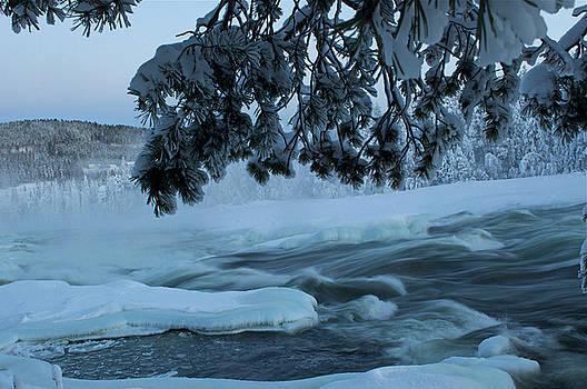 Storforsen waterfall  in winter by Tamara Sushko