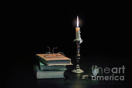 Stories In The Dark by Evelina Kremsdorf