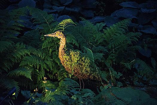 Michael Bessler - stork topiary at dusk