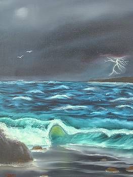 Storm Across the Bay by David  Barnes
