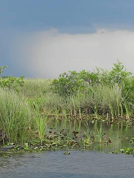 Storm Across The Marsh by Amber Bobbitt