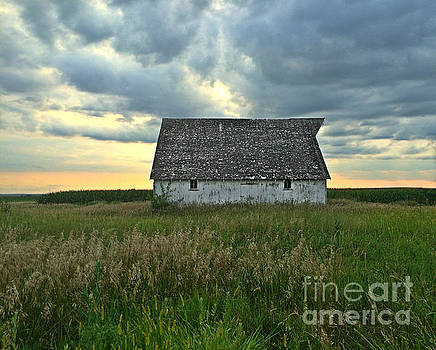 Storm And Light On The Farm by Kathy M Krause