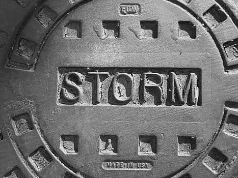 Storm by Anna Villarreal Garbis
