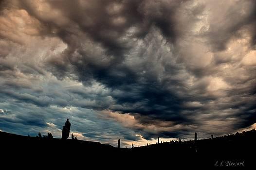 Storm at Sunrise by L L Stewart