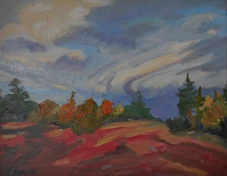 Storm Cell by Francine Frank