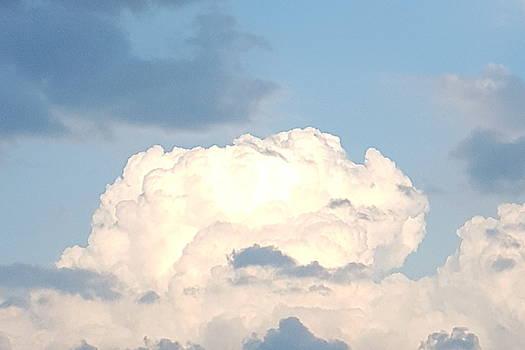 Storm Cloud Rising by Tammy Finnegan
