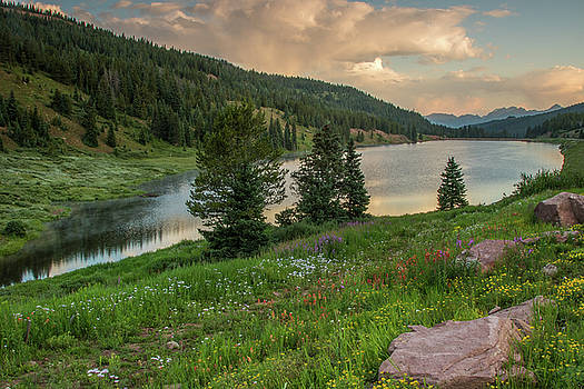Storm clouds and wild flowers by Lois Lake