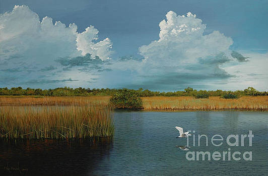 Storm Clouds over the Myakka River  by Michael Nowak