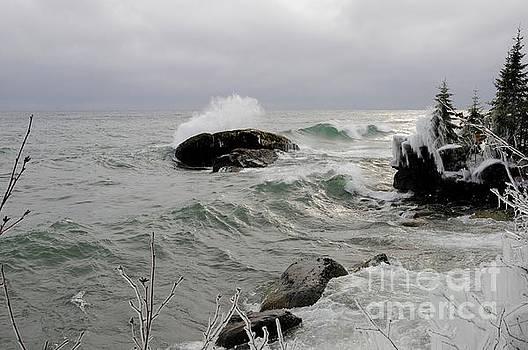 Storm December Day by Sandra Updyke