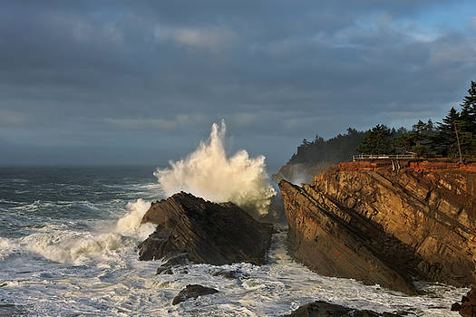 Storm driven waves bathed in evening light crash against the cliffs at Shore Acres State Park. by Larry Geddis