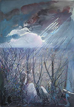 Storm Light by David McKee
